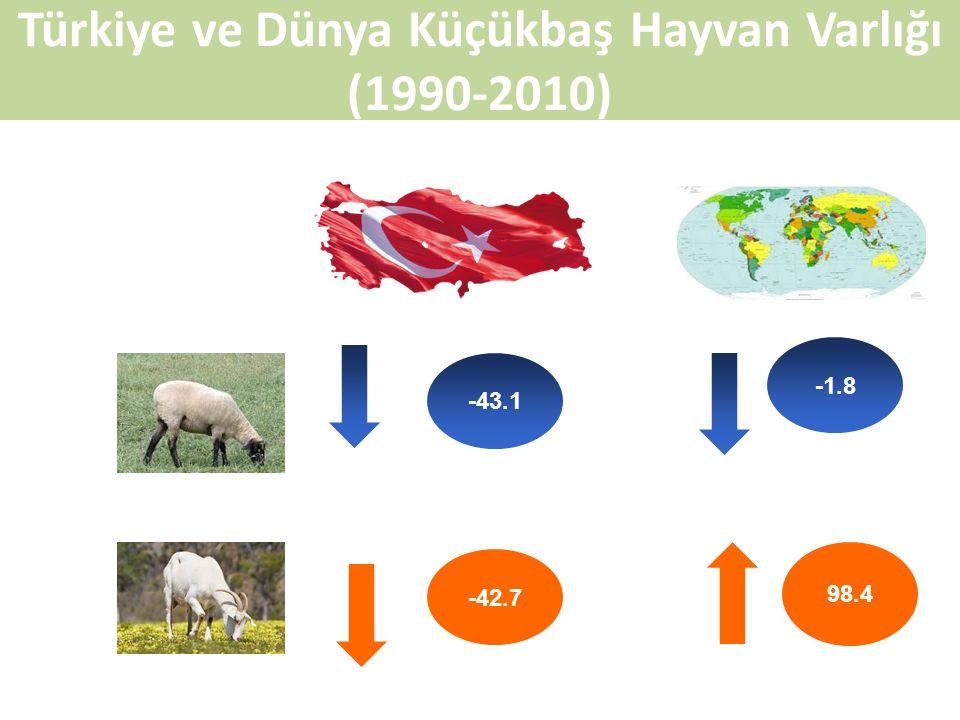 Türkiye ve Dünya Küçükbaş Hayvan Varlığı (1990-2010)