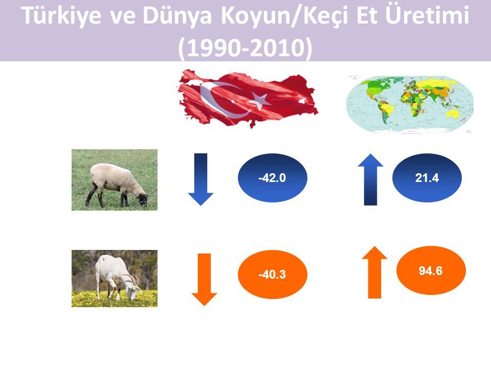 Türkiye ve Dünya Koyun/Keçi Et Üretimi (1990-2010)