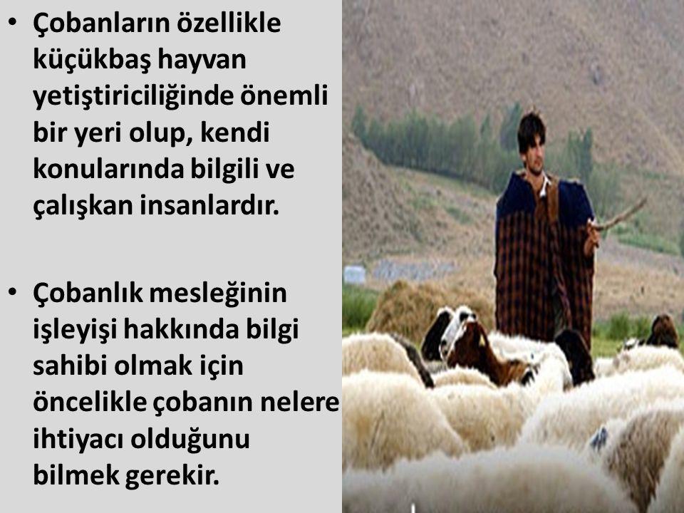 Çobanların özellikle küçükbaş hayvan yetiştiriciliğinde önemli bir yeri olup, kendi konularında bilgili ve çalışkan insanlardır.
