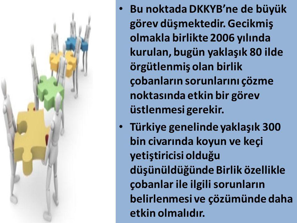 Bu noktada DKKYB'ne de büyük görev düşmektedir