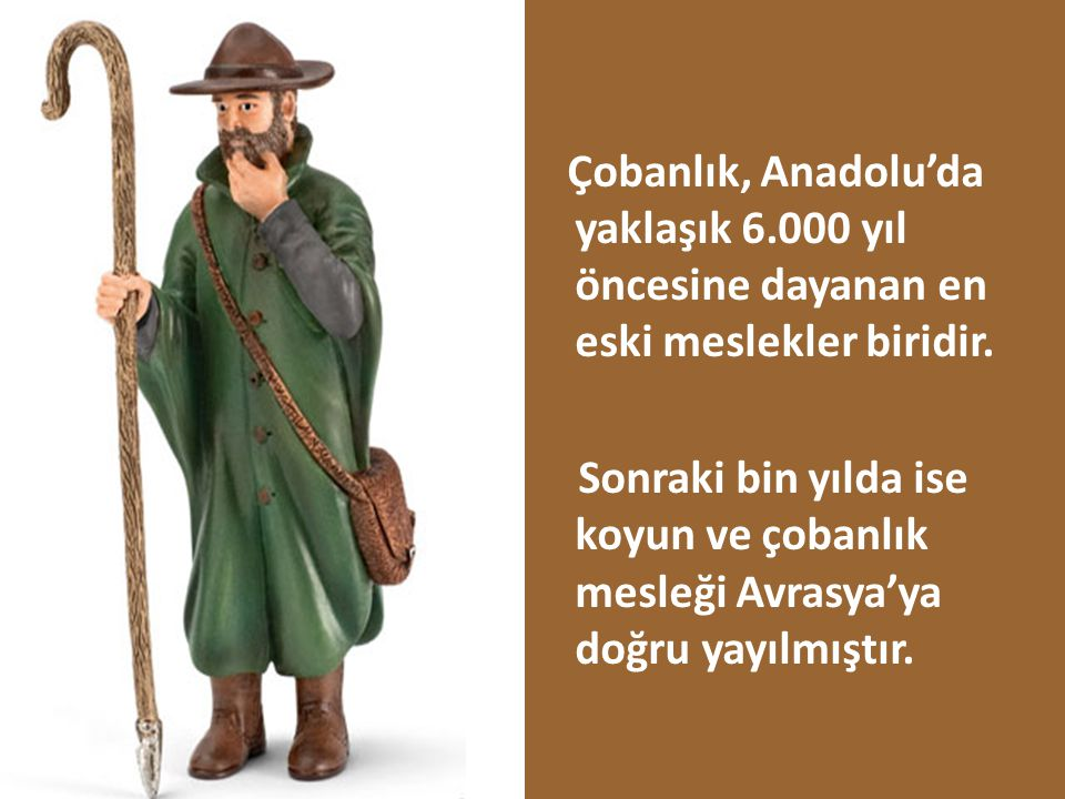 Çobanlık, Anadolu'da yaklaşık 6