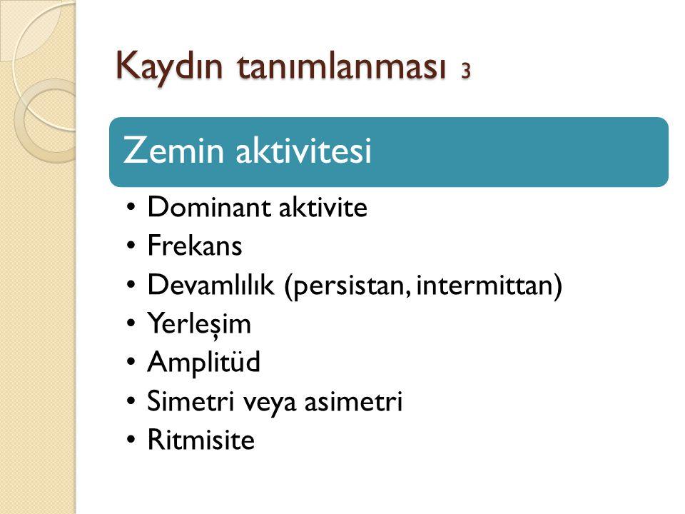 Kaydın tanımlanması 3 Zemin aktivitesi Dominant aktivite Frekans