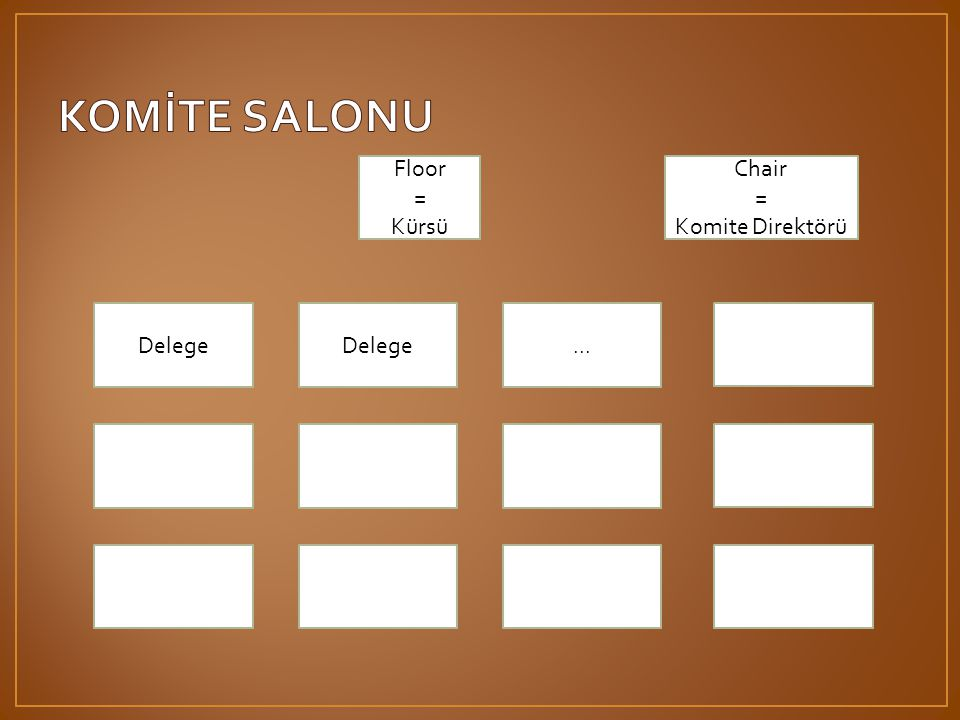 KOMİTE SALONU Floor = Kürsü Chair = Komite Direktörü Delege Delege ...