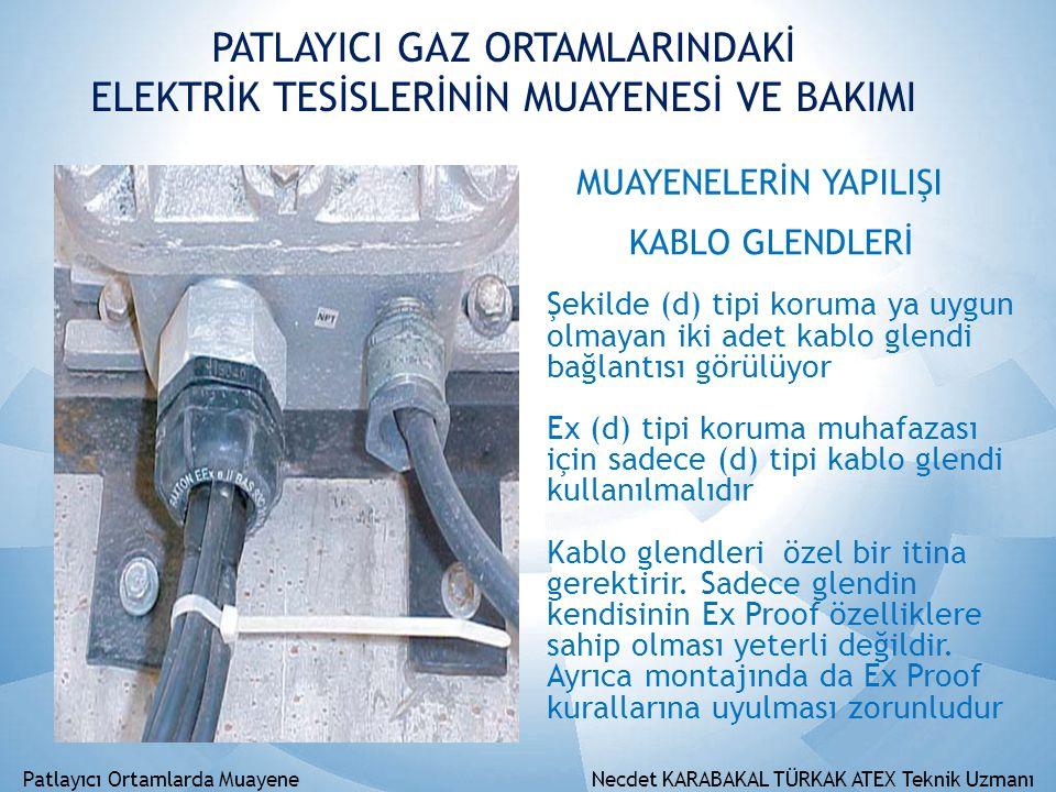 PATLAYICI GAZ ORTAMLARINDAKİ ELEKTRİK TESİSLERİNİN MUAYENESİ VE BAKIMI