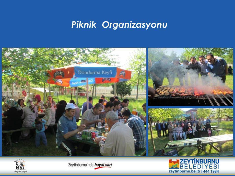 Piknik Organizasyonu