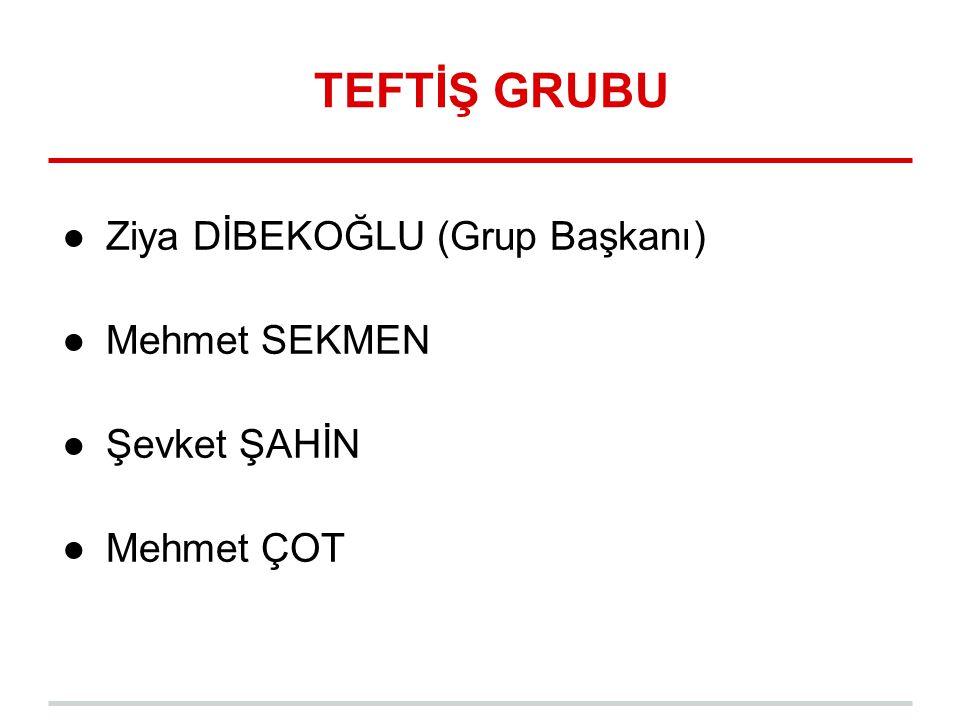 TEFTİŞ GRUBU Ziya DİBEKOĞLU (Grup Başkanı) Mehmet SEKMEN Şevket ŞAHİN