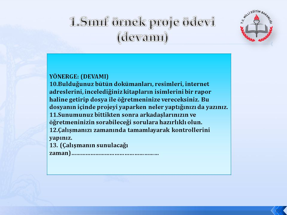 1.Sınıf örnek proje ödevi (devamı)