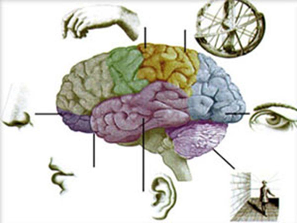 Uzman Psikolojik Danışman Refika Yazgaç