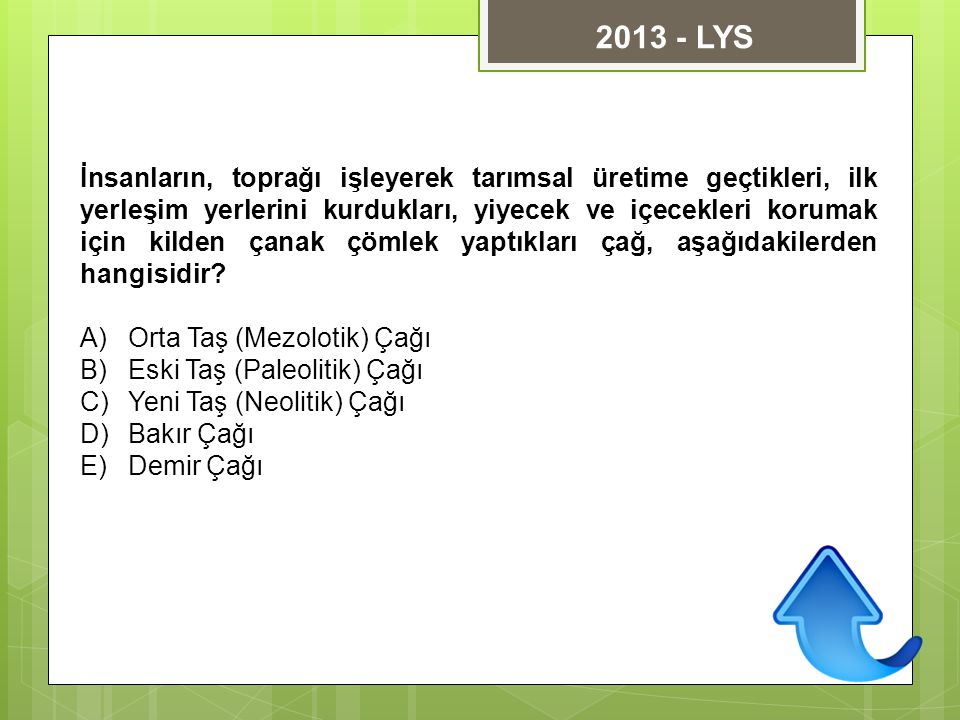 2013 - LYS