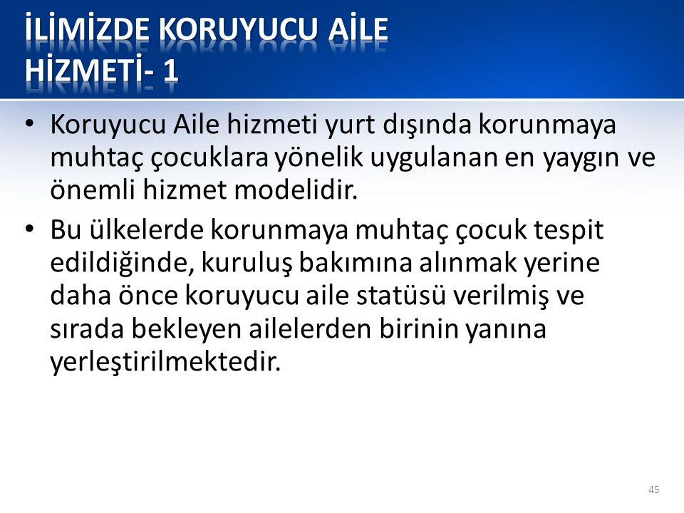 İLİMİZDE KORUYUCU AİLE HİZMETİ- 1