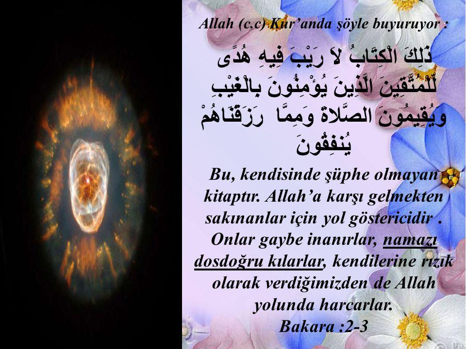 Allah (c.c) Kur'anda şöyle buyuruyor :