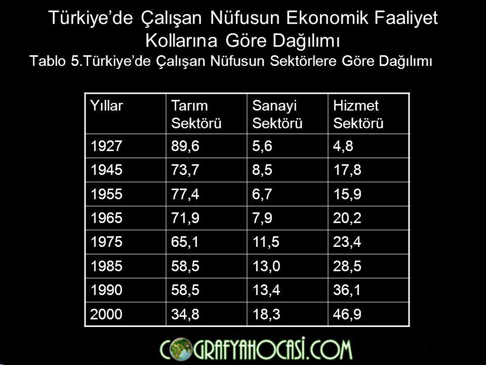 Türkiye'de Çalışan Nüfusun Ekonomik Faaliyet Kollarına Göre Dağılımı