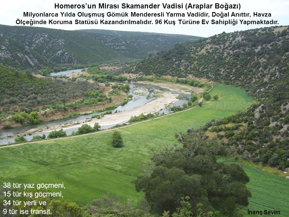 Homeros'un Mirası Skamander Vadisi (Araplar Boğazı) Milyonlarca Yılda Oluşmuş Gömük Menderesli Yarma Vadidir, Doğal Anıttır, Havza Ölçeğinde Koruma Statüsü Kazandırılmalıdır. 96 Kuş Türüne Ev Sahipliği Yapmaktadır.