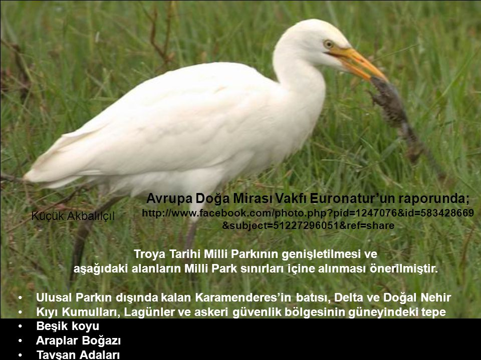 Avrupa Doğa Mirası Vakfı Euronatur'un raporunda; http://www. facebook