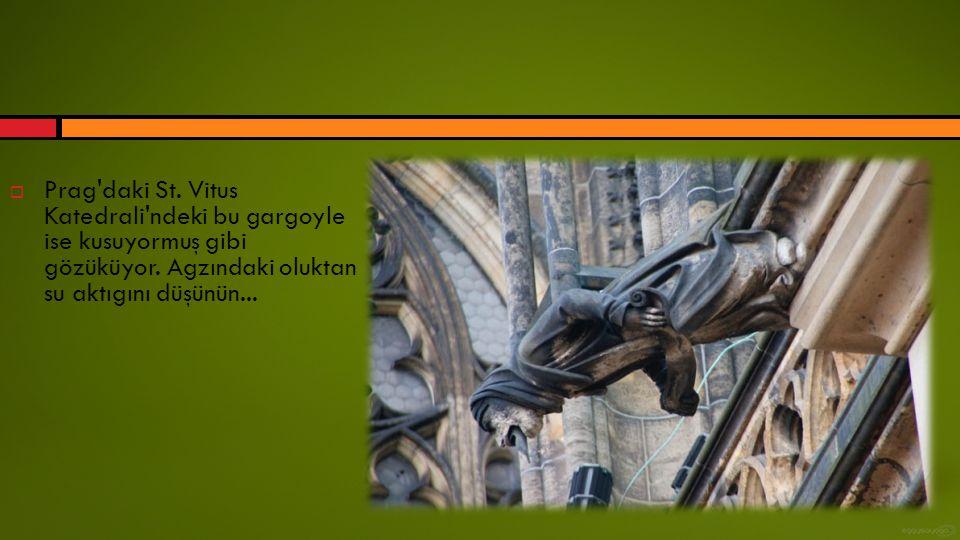 Prag daki St. Vitus Katedrali ndeki bu gargoyle ise kusuyormuş gibi gözüküyor.