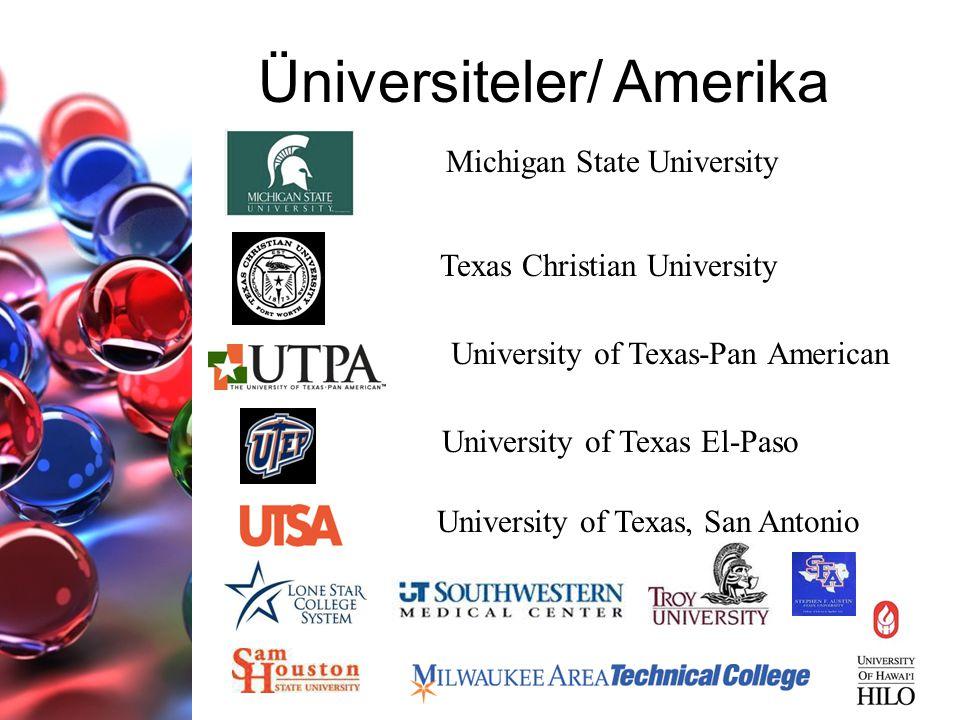 Üniversiteler/ Amerika