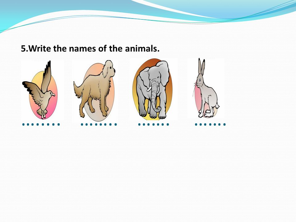 5.Write the names of the animals. …..... …….. ……. …….