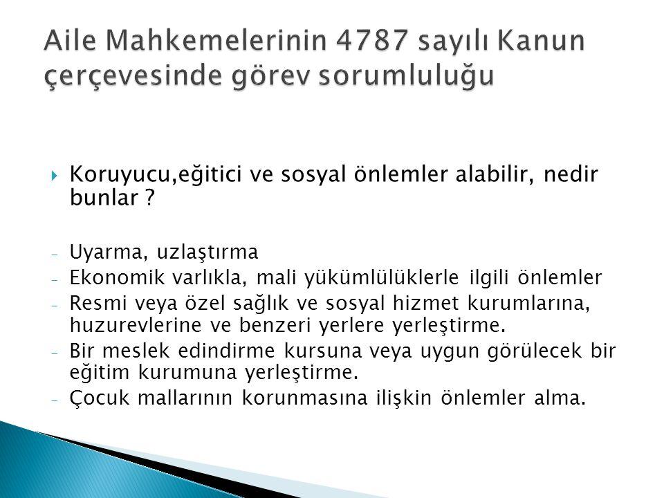 Aile Mahkemelerinin 4787 sayılı Kanun çerçevesinde görev sorumluluğu
