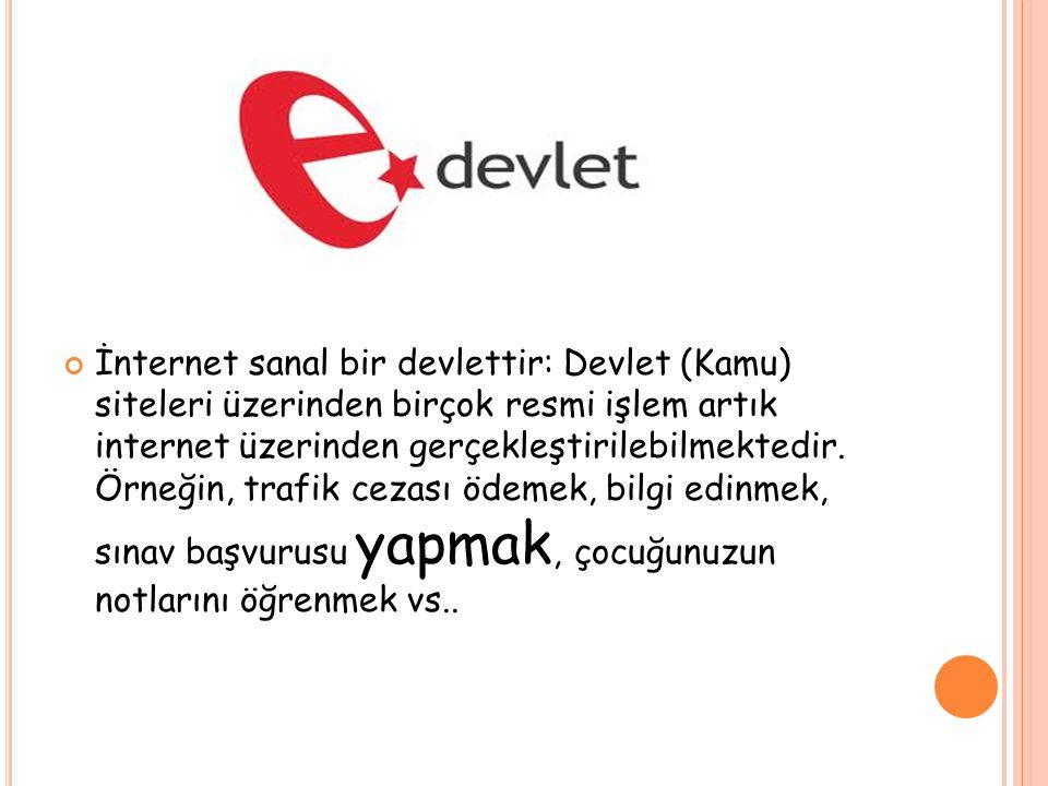 İnternet sanal bir devlettir: Devlet (Kamu) siteleri üzerinden birçok resmi işlem artık internet üzerinden gerçekleştirilebilmektedir.