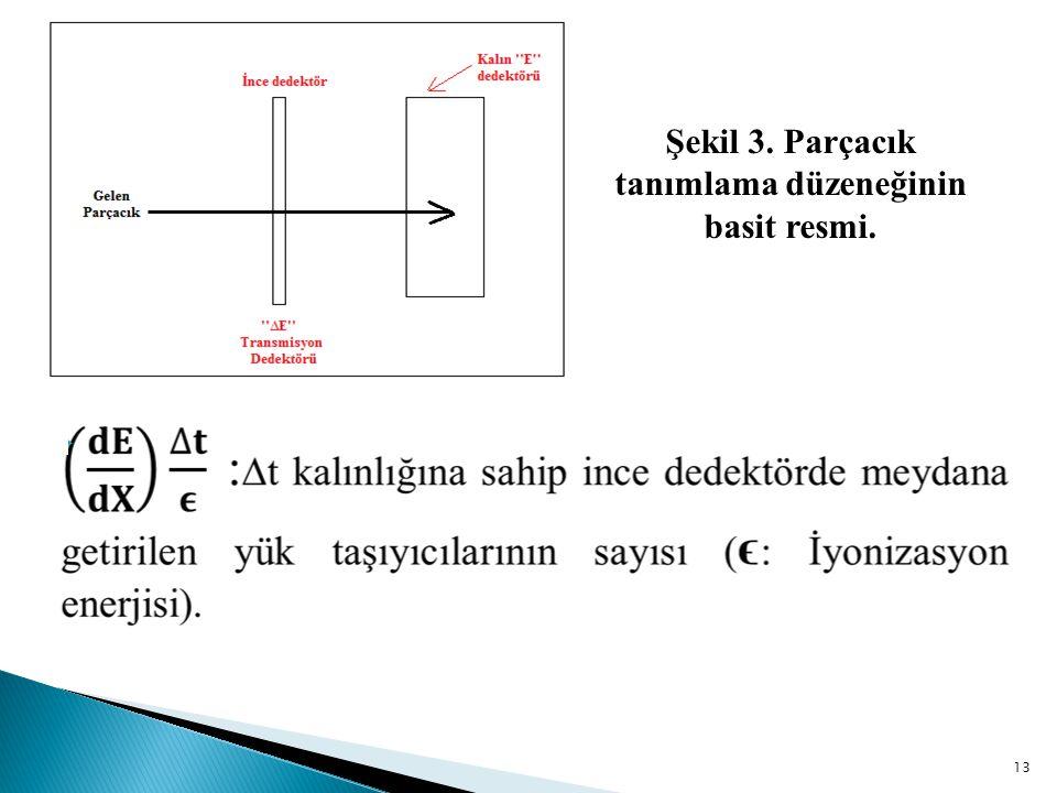 Şekil 3. Parçacık tanımlama düzeneğinin basit resmi.