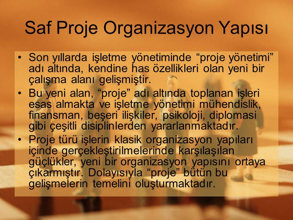 Saf Proje Organizasyon Yapısı