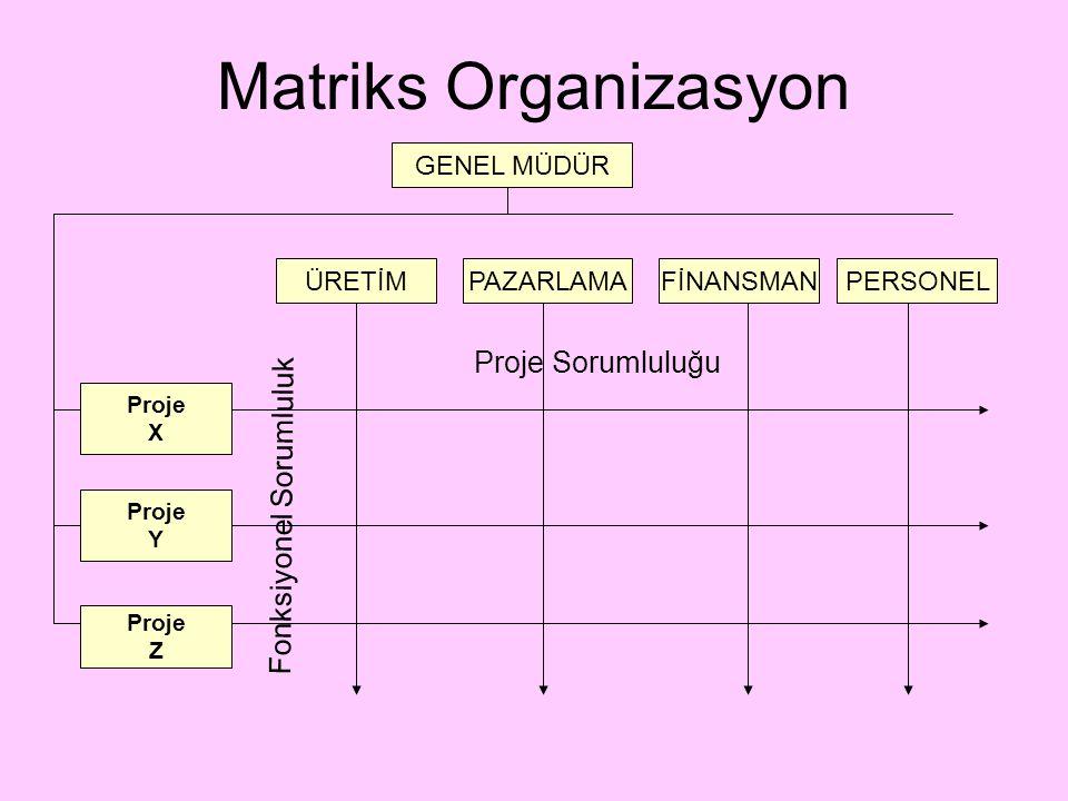 Matriks Organizasyon Proje Sorumluluğu Fonksiyonel Sorumluluk