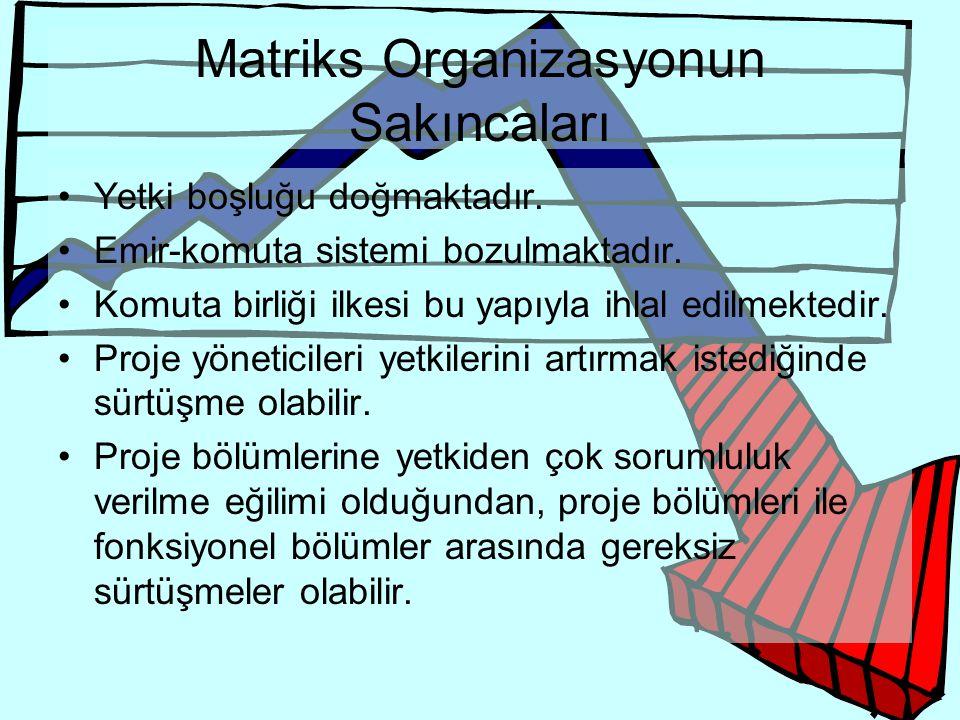 Matriks Organizasyonun Sakıncaları