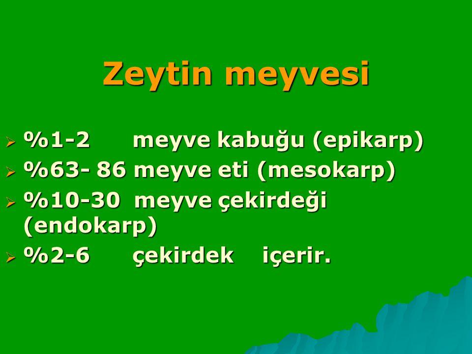 Zeytin meyvesi %1-2 meyve kabuğu (epikarp)