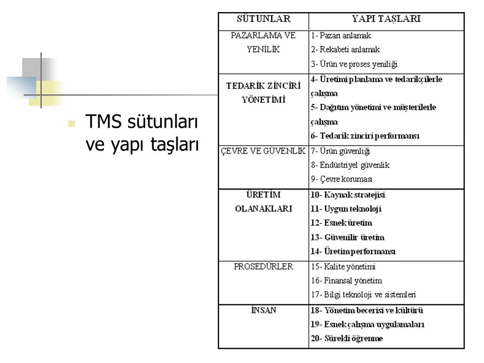 TMS sütunları ve yapı taşları
