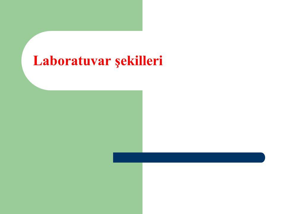 Laboratuvar şekilleri