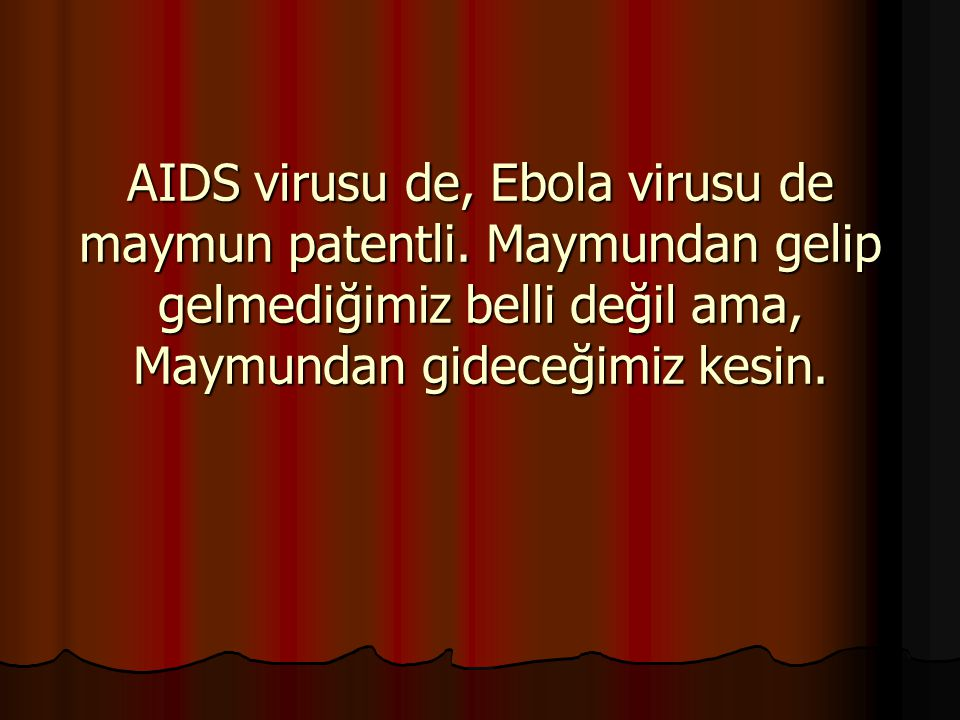AIDS virusu de, Ebola virusu de maymun patentli