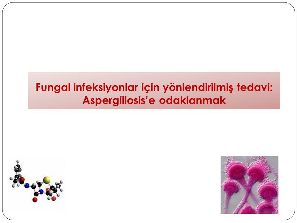 Fungal infeksiyonlar için yönlendirilmiş tedavi: