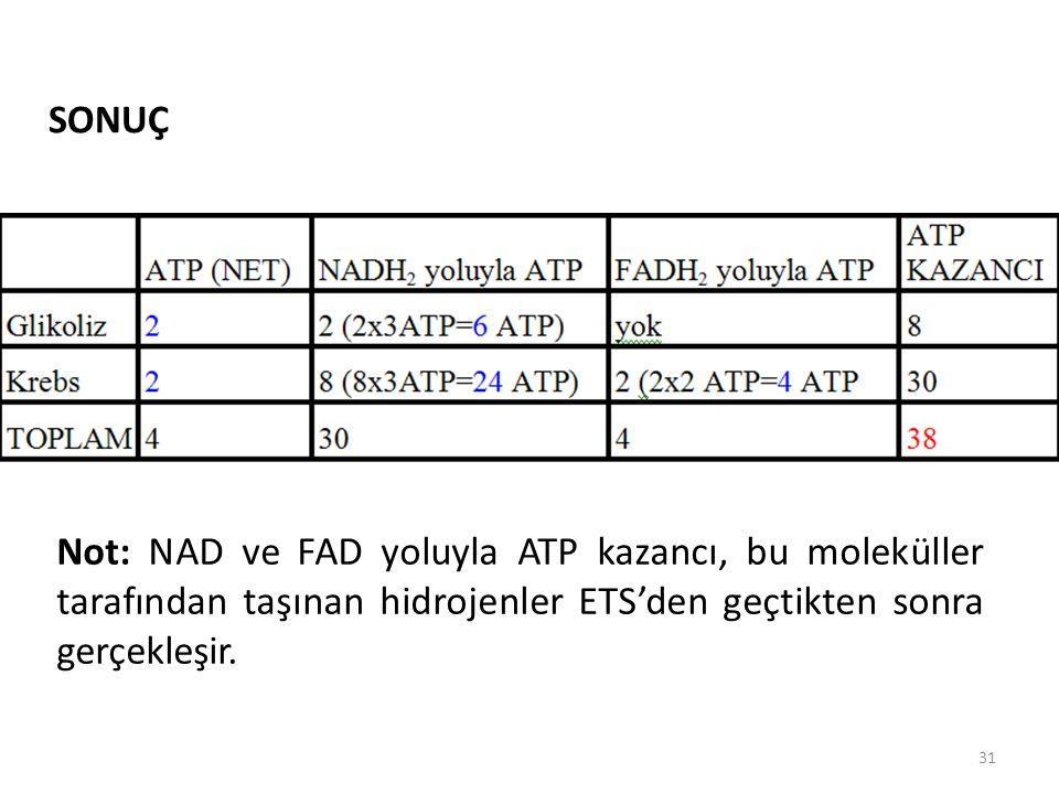 SONUÇ Not: NAD ve FAD yoluyla ATP kazancı, bu moleküller tarafından taşınan hidrojenler ETS'den geçtikten sonra gerçekleşir.