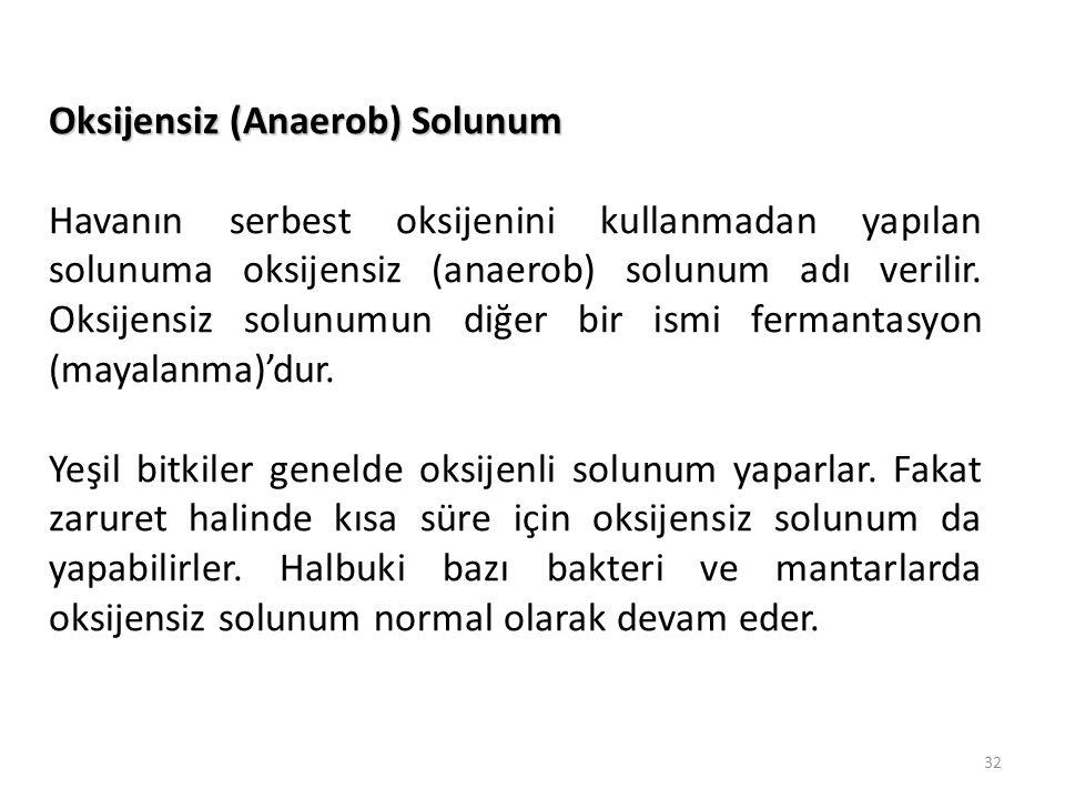 Oksijensiz (Anaerob) Solunum