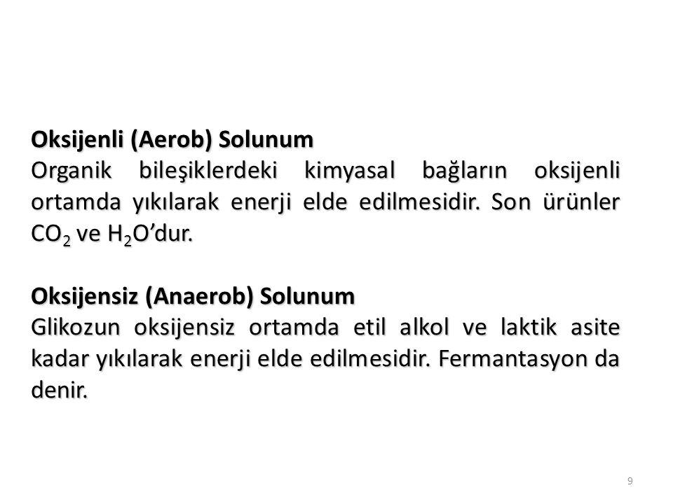 Oksijenli (Aerob) Solunum