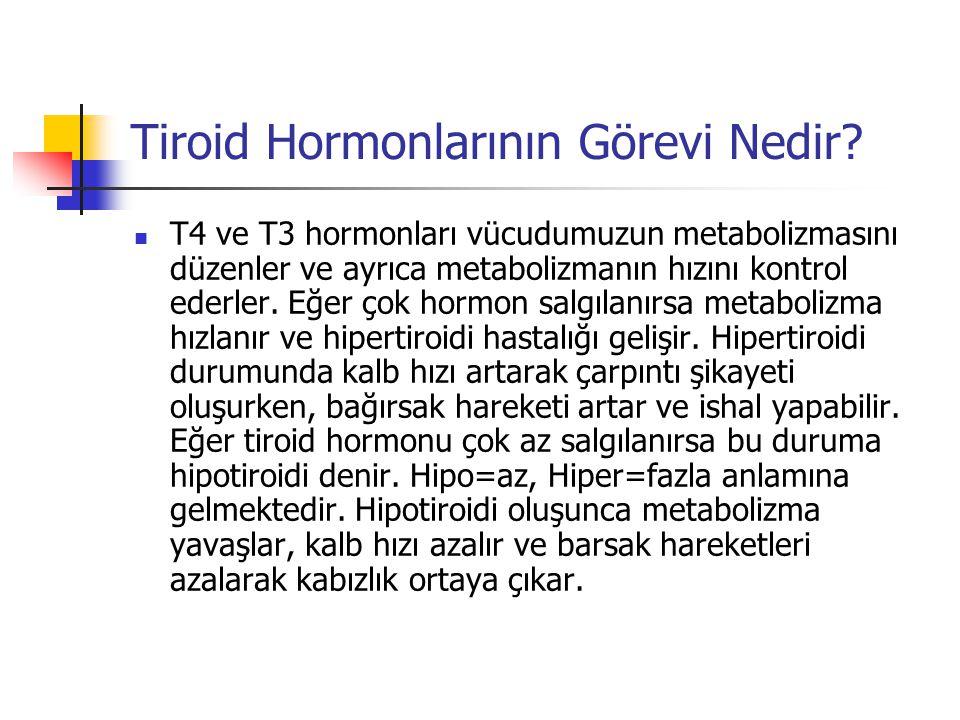 Tiroid Hormonlarının Görevi Nedir