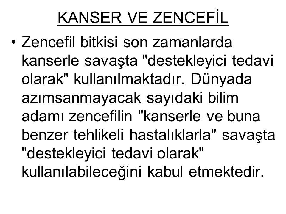 KANSER VE ZENCEFİL