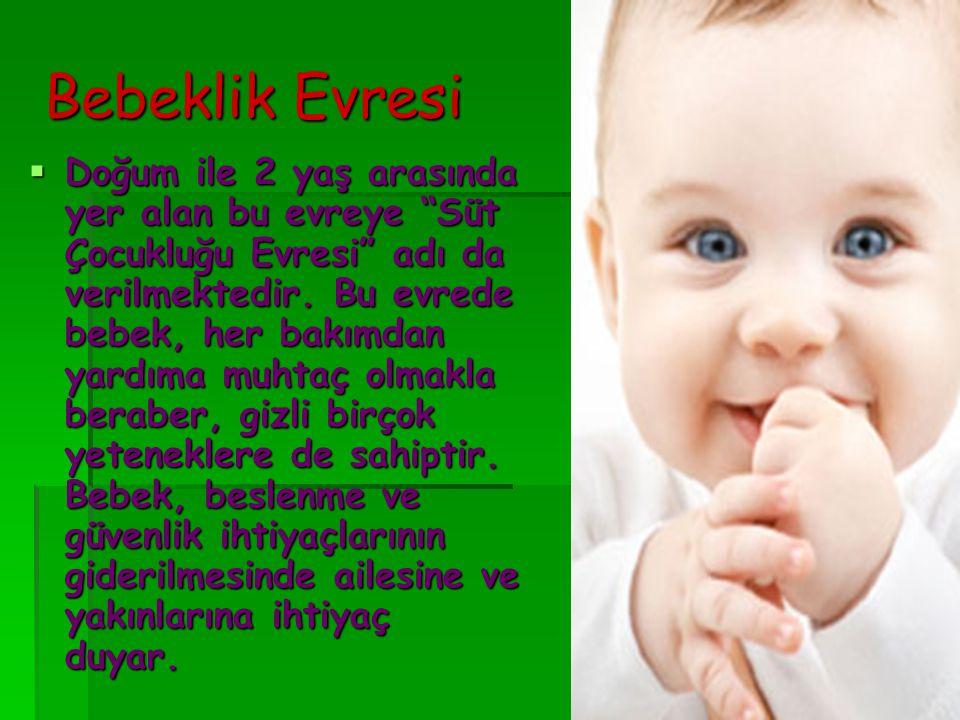 Bebeklik Evresi