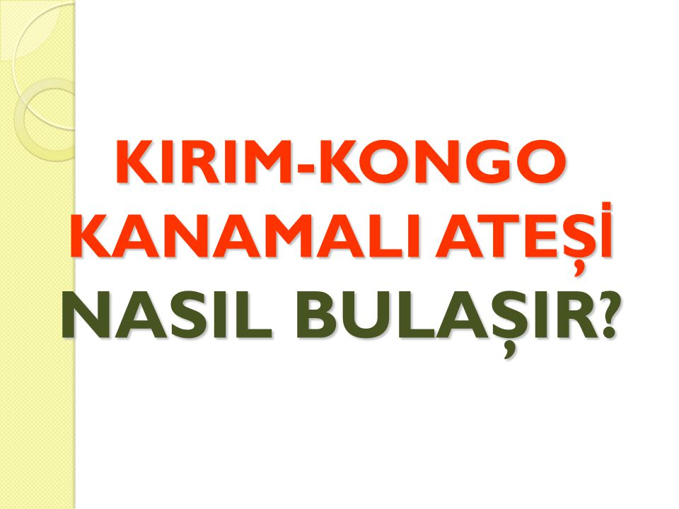 KIRIM-KONGO KANAMALI ATEŞİ NASIL BULAŞIR