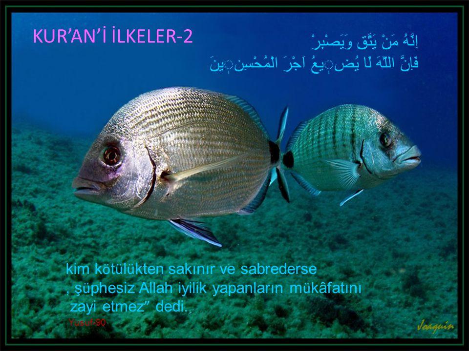 KUR'AN'İ İLKELER-2 اِنَّهُ مَنْ يَتَّقِ وَيَصْبِرْ