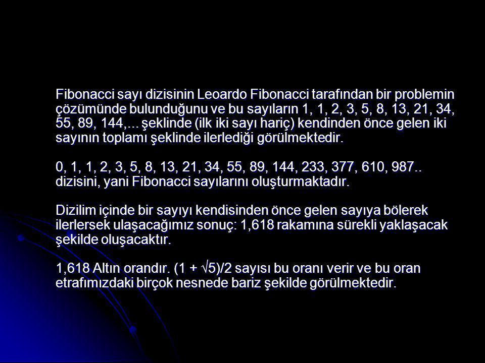 Fibonacci sayı dizisinin Leoardo Fibonacci tarafından bir problemin çözümünde bulunduğunu ve bu sayıların 1, 1, 2, 3, 5, 8, 13, 21, 34, 55, 89, 144,...