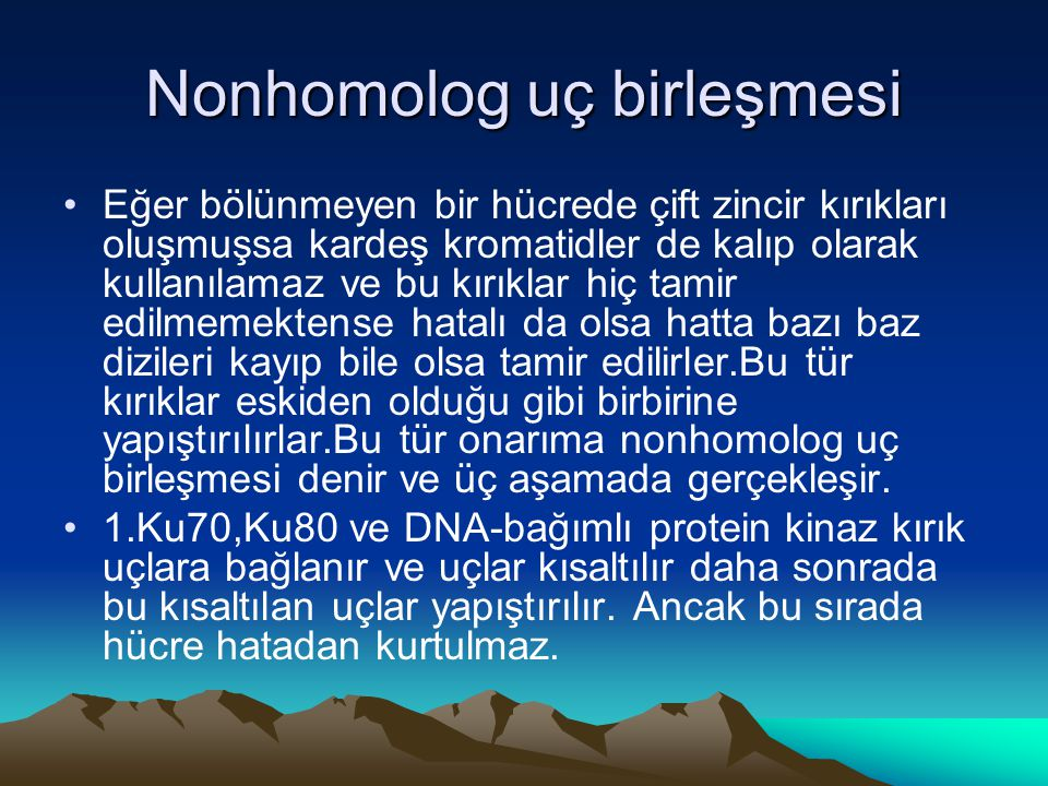 Nonhomolog uç birleşmesi