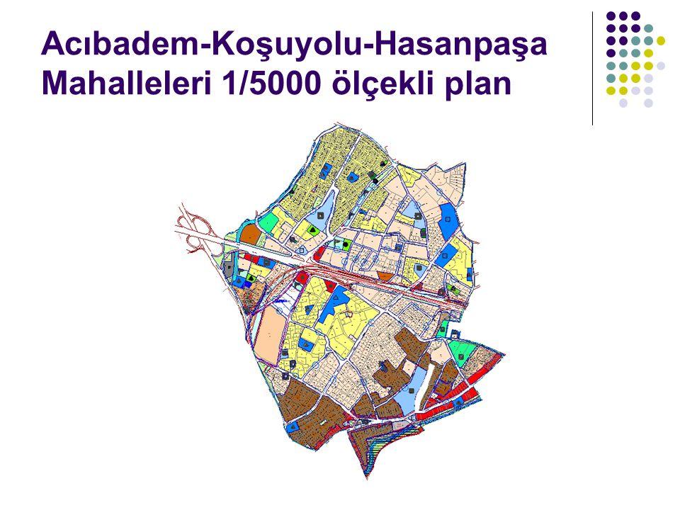 Acıbadem-Koşuyolu-Hasanpaşa Mahalleleri 1/5000 ölçekli plan