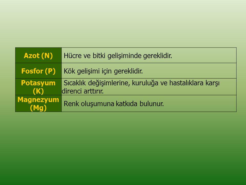 Azot (N) Hücre ve bitki gelişiminde gereklidir. Fosfor (P) Kök gelişimi için gereklidir. Potasyum (K)