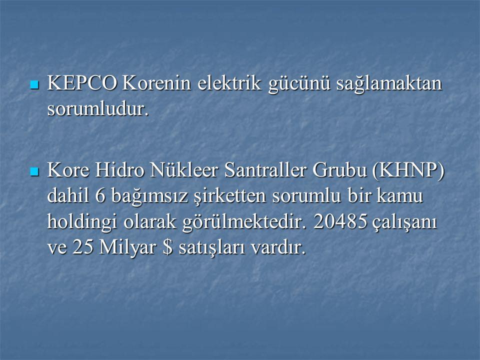 KEPCO Korenin elektrik gücünü sağlamaktan sorumludur.