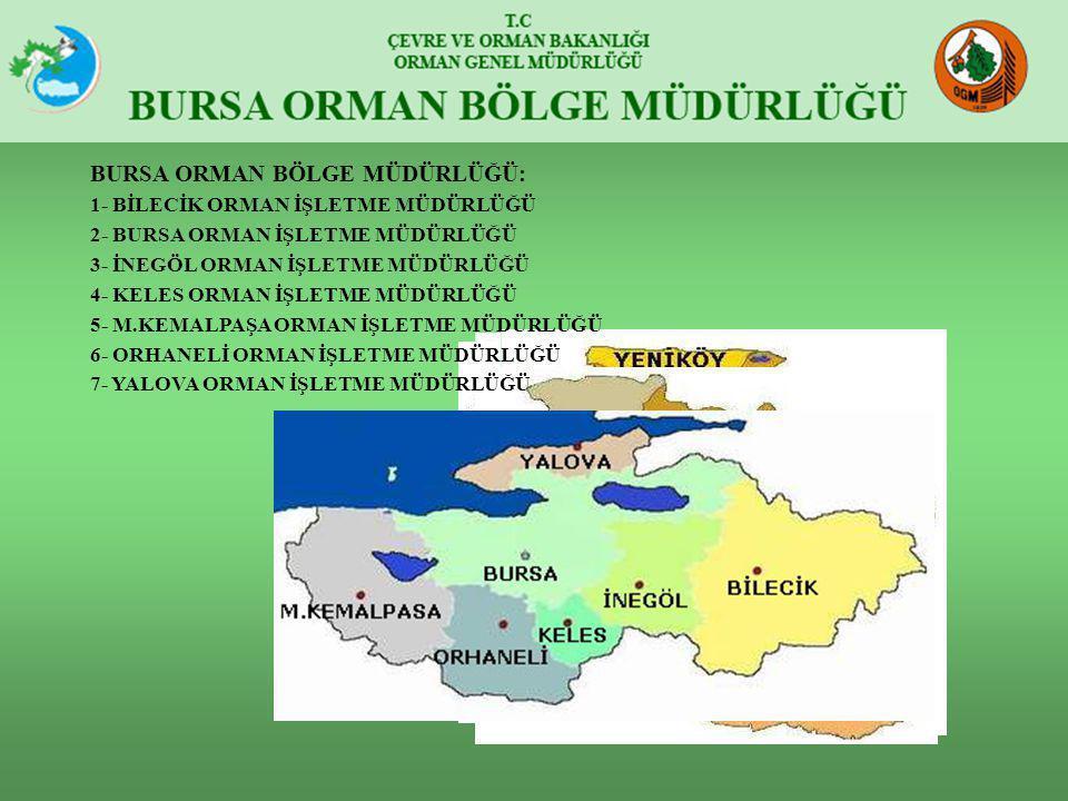 BURSA ORMAN BÖLGE MÜDÜRLÜĞÜ: