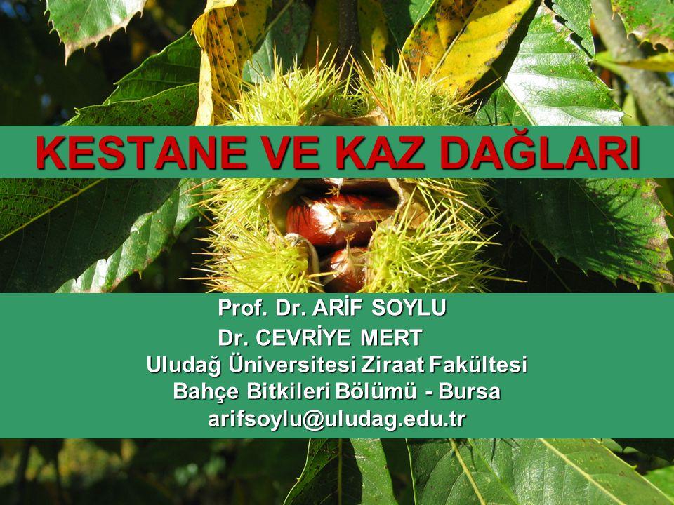 Uludağ Üniversitesi Ziraat Fakültesi Bahçe Bitkileri Bölümü - Bursa