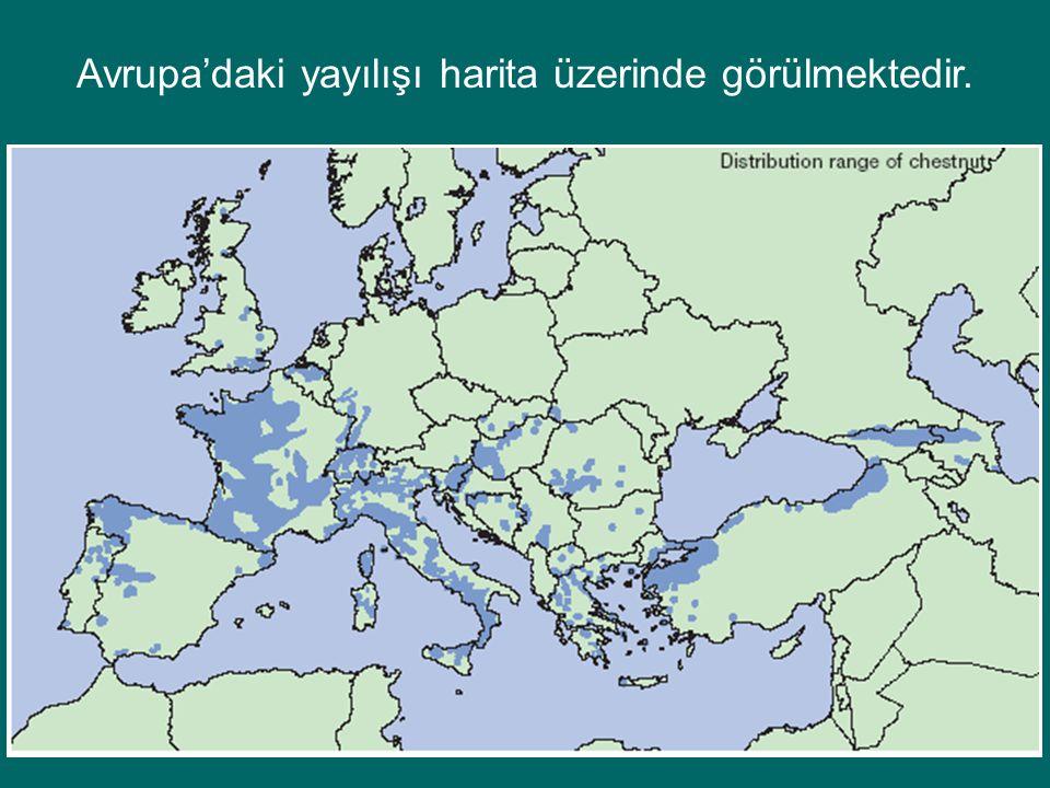 Avrupa'daki yayılışı harita üzerinde görülmektedir.