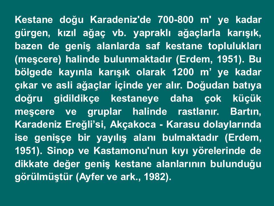 Kestane doğu Karadeniz de 700-800 m ye kadar gürgen, kızıl ağaç vb