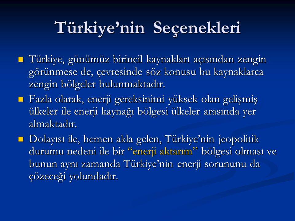 Türkiye'nin Seçenekleri